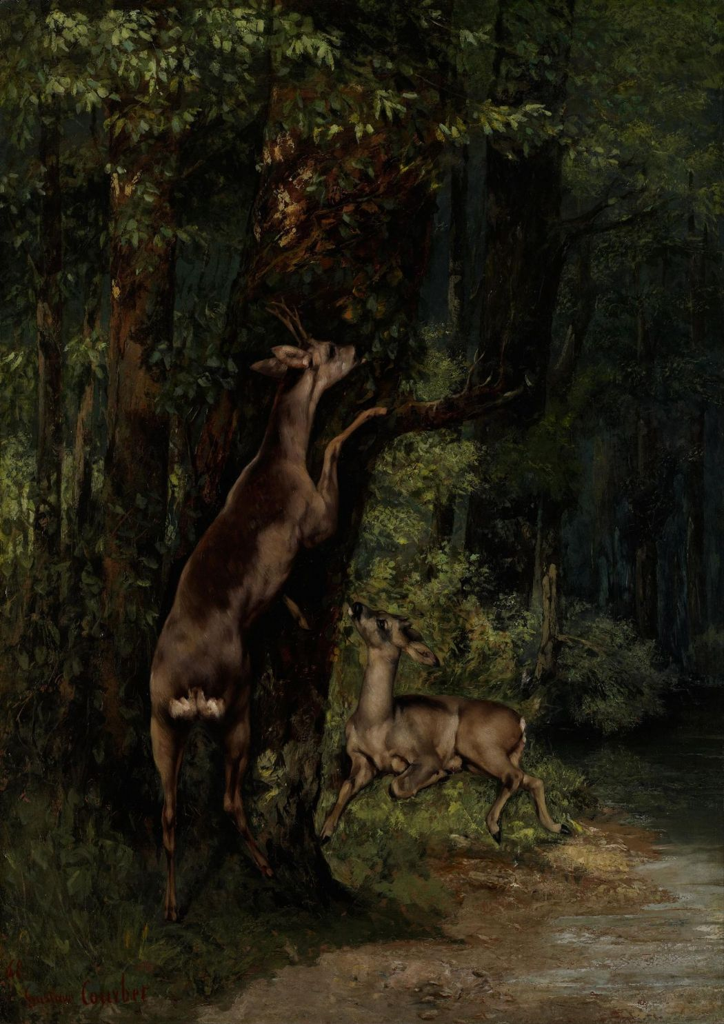 Courbet, Gustave: Deer in the Forest. Fine Art Print/Poster. Sizes: A4/A3/A2/A1 (003984)